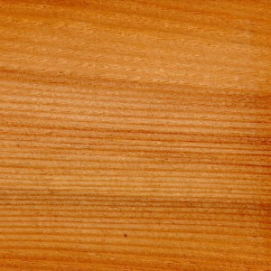 Tanne Holz Furnier